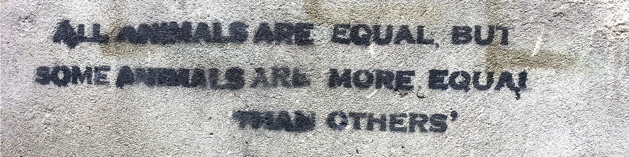 All animals are equal graffiti