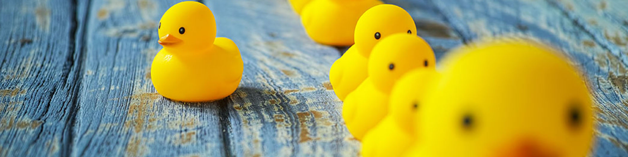 Rubber ducks in a row with one apart